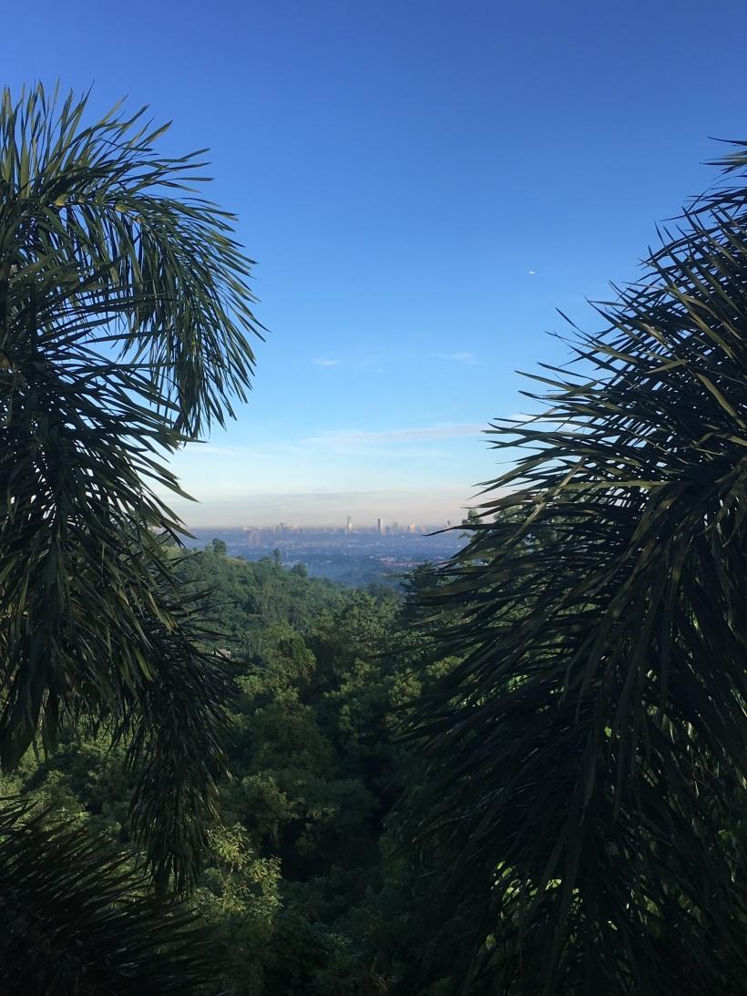 Manila view copy