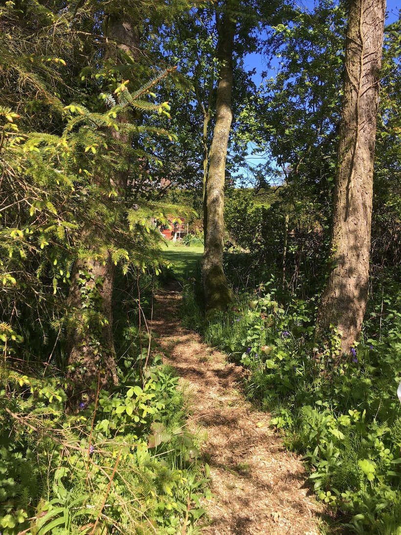 garden path copy.jpg